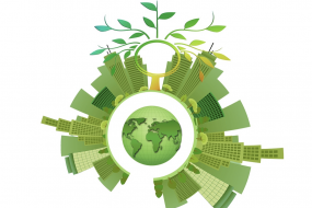 Certificate in Sustainable Business image