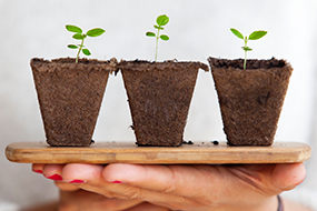 Grow to Greatness: Smart Growth for Private Businesses, Part 1  image